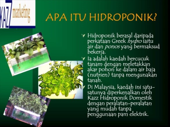 Apa Itu Hidroponik Hidroponik Di Malaysia
