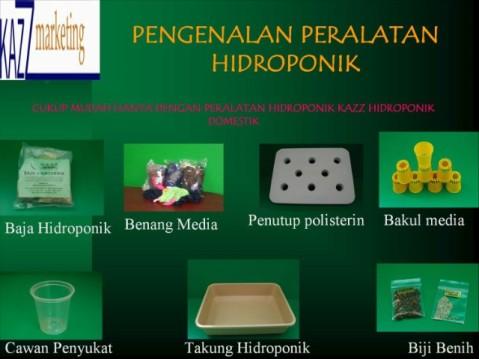 Segalanya tentang penanaman hidroponik | Info Tanaman ...